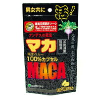 マカ増大サプリマカ100%45カプセル男性サポートサプリメントメール便送料無料n031600