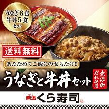うなぎ6食と牛丼5食のセット