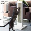 猫の爪とぎスタンドタワー TOWER 猫が立ったまま背伸びして爪とぎができるスタンド 研ぎカスは下のトレーに直接落ちるからお手入れラクラク 猫の爪とぎ(別売)を上から差し込むだけ【あす楽_土曜営業】【ポイント最大19倍】