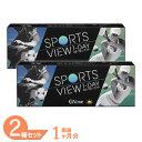 【送料無料】スポーツビューワンデー 2箱セット(1箱30枚入...
