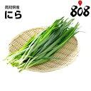 【送料別】【高知県産】ニラ 1パック 約100g【野菜詰め合わせセットと同梱で送料無料】野菜宅配