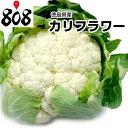 【徳島県産】カリフラワー L〜2Lサイズ 1株 約900g【野菜詰め合わせセットと同梱で送料無料】【送料別】