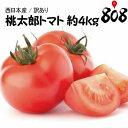 【送料無料】【西日本産】訳あり 桃太郎トマト 大きさおまかせ