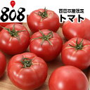 【送料無料】【西日本産】超ビッグサイズ トマト 1箱 12〜...
