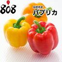 【島根県産】パプリカ 1個 約180g【野菜詰め合わせセット...