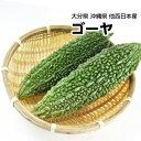 808青果店で買える「【西日本産】ゴーヤ にがうり 1本 約200g【野菜詰め合わせセットと同梱で送料無料】【送料別】」の画像です。価格は321円になります。