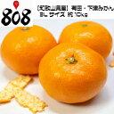 【送料無料】【和歌山県産】有田・下津みかん 3Lサイズ 約1