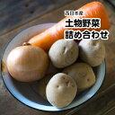 西日本産 土物野菜詰め合わせセット5品【常温便送料無料】(北