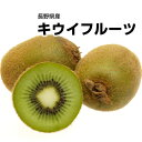 【長野県産】訳有り 国産キウイフルーツ大きさお任せ!!1kg...