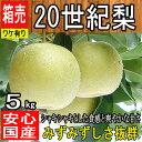 【鳥取県産他西日本産】 20世紀梨 約5kg 大きさおまかせ...
