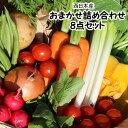 【西日本産】808新鮮野菜おまかせ詰め合わせセット8品【常温