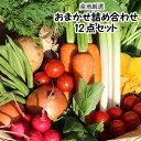 【産地厳選】808野菜詰め合わせセット 12品【単品商品同梱
