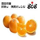 【送料無料】【西日本産】訳あり 清見オレンジ 大きさおまかせ 約10kg(北海道沖縄別途送料加算)