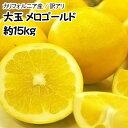 【カリフォルニア産】訳あり大玉メロゴールド 約15kg【常温...