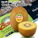 【ニュージーランド産】ゼスプリ サンゴールドキウイフルーツ ...