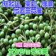 【和歌山、高知、徳島他、西日本産】実山椒 山椒の実 1箱 約500g【予約】【5月半ば以降…