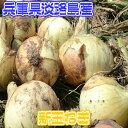 【兵庫県産】淡路特選 新玉ねぎ 玉ネギ 約20kg 小玉 訳...