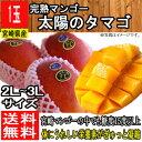 【宮崎県産】完熟マンゴー 太陽のタマゴ 2L〜3Lサイズ 1...