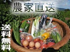 除草剤は使わず、化学肥料も使っていません。畑でもぎ取って食べることが出来る、安心して食べ...