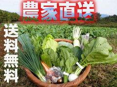 除草剤は使わず、化学肥料も使っていません。農家直送の新鮮詰め合わせ野菜セットです。