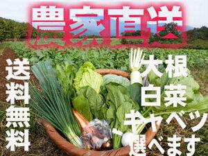 除草剤は使わず、化学肥料も使っていません。農家直送の新鮮野菜セットです。大根かかぶ・白菜...