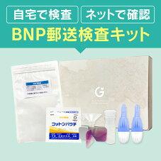 心臓検査キットNT-proBNP検査