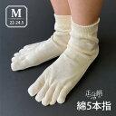 冷えとり健康法に一番適したゆったり綿5本指靴下(2枚目)【正活絹】2枚目:綿5本指ソックス(M)