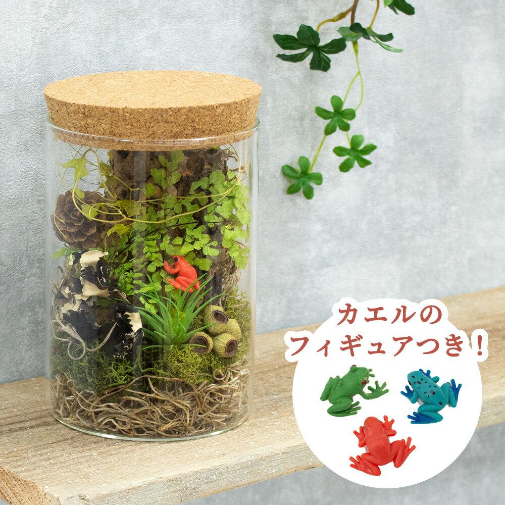 花・観葉植物, ドライフラワー  L
