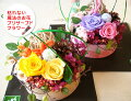 ★長寿プリザ★気持ちのこもったプリザーブドフラワー(枯れない花)のフラワーギフトです。男性日本一長寿のおじいさんに贈らせていただいた商品♪【きょうと●0924】