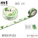 倉敷文具RUKARUKAで買える「マスキングテープ mt ex [春の七草] 15mm×10m カモ井加工紙 129-MTEX1P153 【ネコポス可】 マステ ラッピング ギフト かわいい カワイイ 可愛い 野菜 グリーン」の画像です。価格は172円になります。