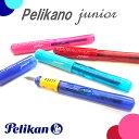 《Pelikano junior》 ぺリカーノジュニア/万年...