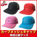 C_meshcap_01