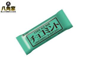 赤城乳業 AKAGI チョコミント クールアイスバー 83ml 30本入