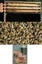 ミツバチ飼育種蜂3枚群入門キット2021年11月下旬出荷予定