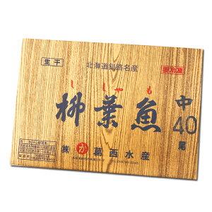 葛西水産 干しシシャモ メス 40尾入 / ししゃも 釧路 お土産【凍】