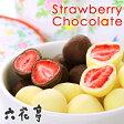 六花亭 ストロベリーチョコ セットギフト北海道土産 お菓子 ハロウィン 熨斗
