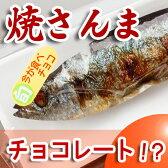 おもしろい 焼きさんまチョコレートギフト プレゼント 北海道 ご当地 お土産