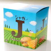 札幌カレーせんべいカリカリまだある?海老味