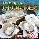 【送料無料】《九十九島産》殻付き生牡蠣3kg開け方ガイド付/生食可/UV殺菌処理
