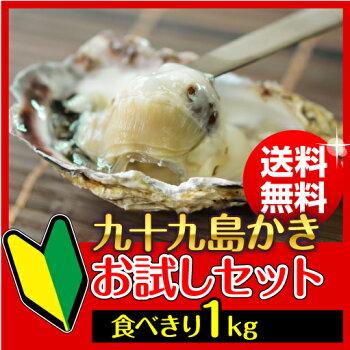 小粒でおいしい♪《送料無料/お試しセット》殻付き牡蠣1kg/牡蠣ナイフ付き、開け方ガイド付【送料無料】牡蠣が食べられない人でも臭みがないので食べられる!
