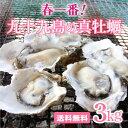 【送料無料】《九十九島産》春一番!殻付き生牡蠣3kg開け方ガ