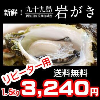 《九十九島産》岩牡蠣(岩がき)_夏牡蠣