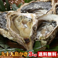 【送料無料】九十九島産殻付き牡蠣3kg