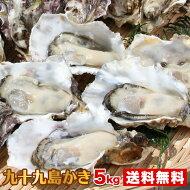 【送料無料】九十九島産殻付き牡蠣5kg