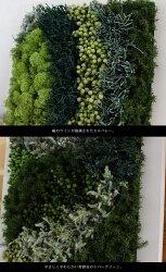 grartフォレスト暮らしの中に手軽に取り入れられるプリザーブドグリーンのパネル
