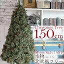 北欧 クリスマスツリー 150cm おしゃれ ヌードツリー もみの木 2019年 枝増量バージョン 松ぼっくり付き 1.5m 単品 【LED ライト オーナメント 飾り なし】