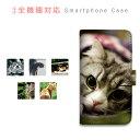 スマホケース 全機種対応 手帳型 携帯ケース 動物 猫 写真 スマートフォン ケース 手帳型ケー……