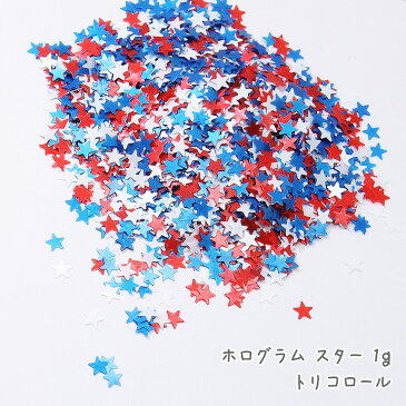 ホログラム スター 1g /レジン封入パーツ ネイルアート用品 星 宇宙 レッド ブルー ホワイト 赤色 青色 水色 白色