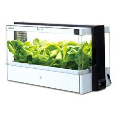 「Green Farm」なら、専用の種や液体肥料、栽培スポンジをセットするだけでお子さまでも簡単に...