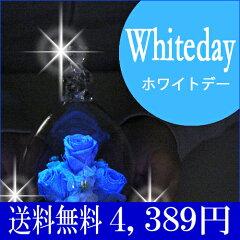 【あす楽】【ベアーアイ 光るバラホタル】光るバラ ホワイトデー花 プリザーブドフラワー 結婚記…